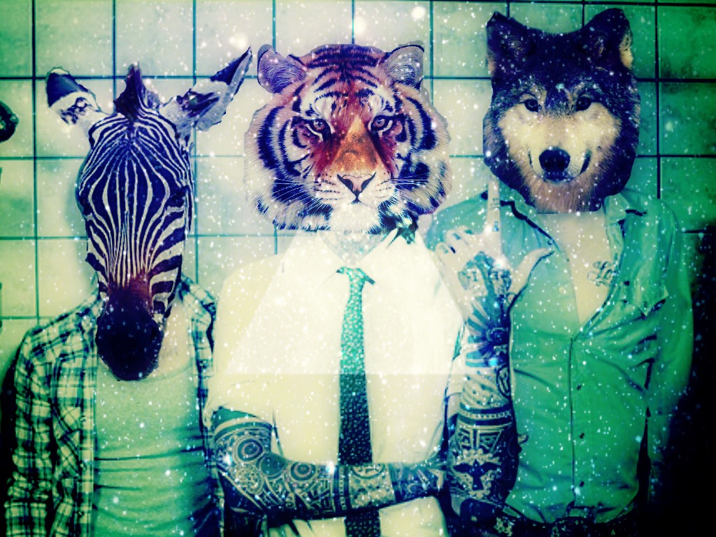 Group Of Hipster Animal Triangle Tumblr