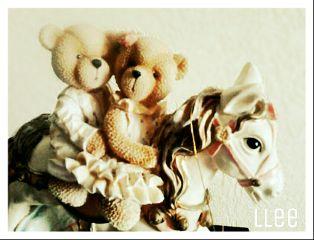 bear love cute
