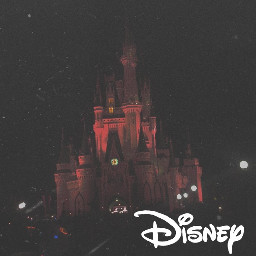 colorful disney disney world walt disney walt disney world overlays mextures ndpatterns travel love