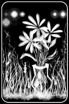 black & white pencil art