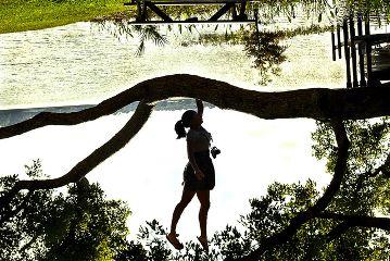 upside down portrait photography landscape