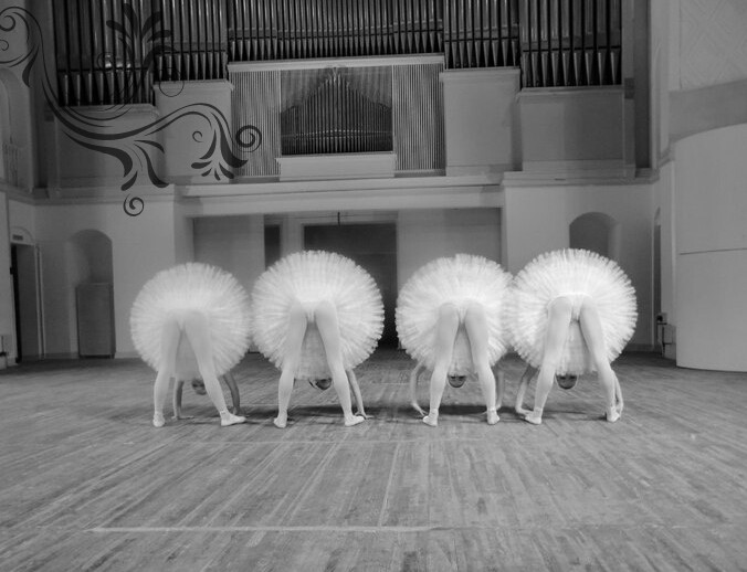 #ballet #dance #emotions #photography #swans